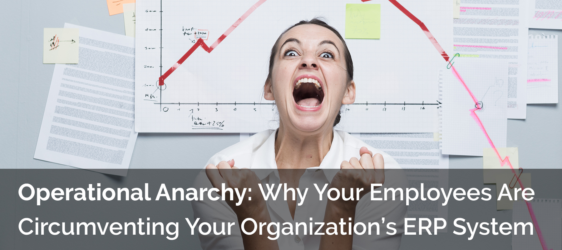 Operational Anarchy: Why Your Employees Are Circumventing Your Organization's ERP System